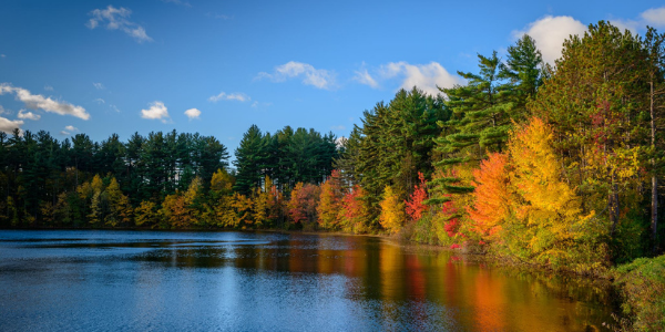 The Best Places for Leaf-Peeping—No Matter Where You Live!